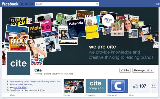 Lovely Sample Facebook Timeline