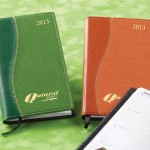 Two 2013 Pocket Planners on Green Background