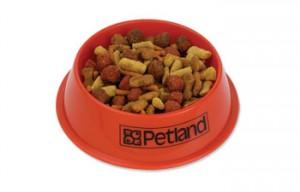 promotional pet food bowl