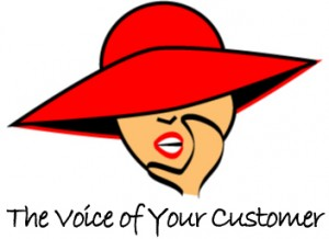 the voice of your company logo